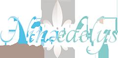 Logo agence Ninaedelys